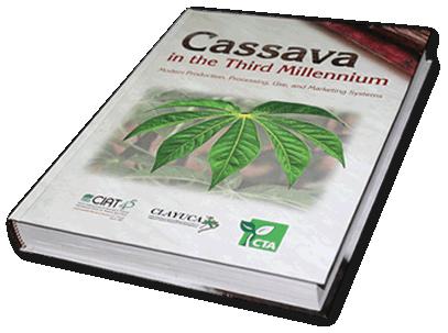 Cassava in the third millenim