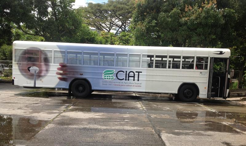 Buses del CIAT